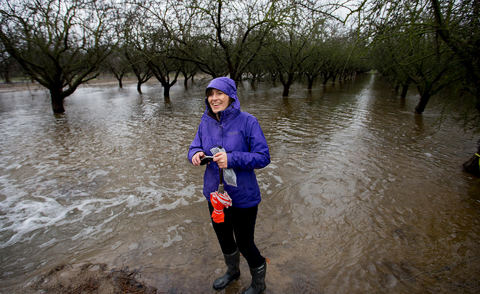 Helen Dahlke, a scientist from the University of California,Davis, stands in an almond orchard outside Modesto that's being deliberately flooded. This experiment is examining how flooding farmland in the winter can help replenish the state's depleted aquifers
